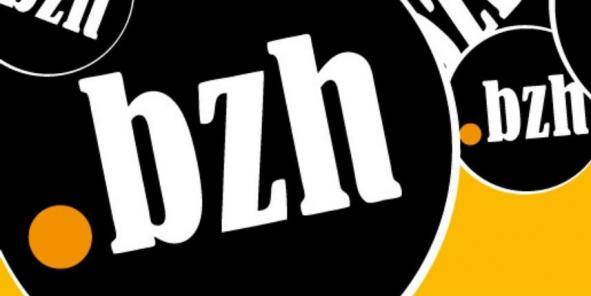 Le .BZH dans le top 5 des nouvelles extensions internet les plus qualitatives