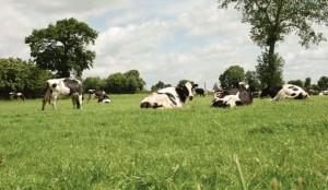 L'agriculture attendue sur le climat
