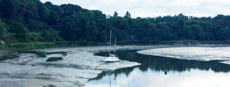 Rance Environnement : ensemble, sauvons l'estuaire