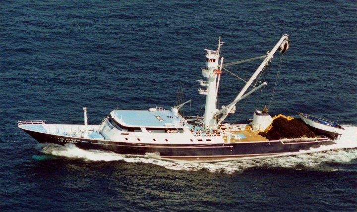 La pêche thonière bretonne, seconde d'Europe