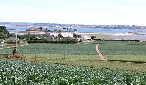 Produire ET résider sur le littoral en Bretagne !