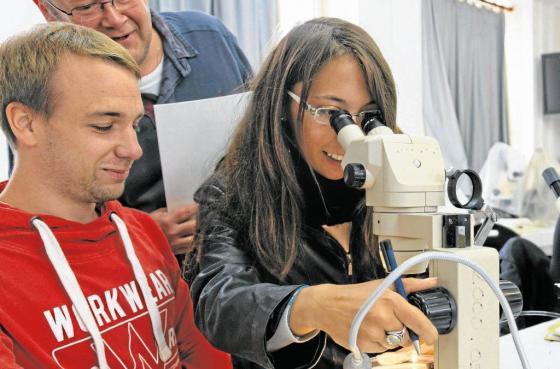 La formation bio marine se développe en Bretagne