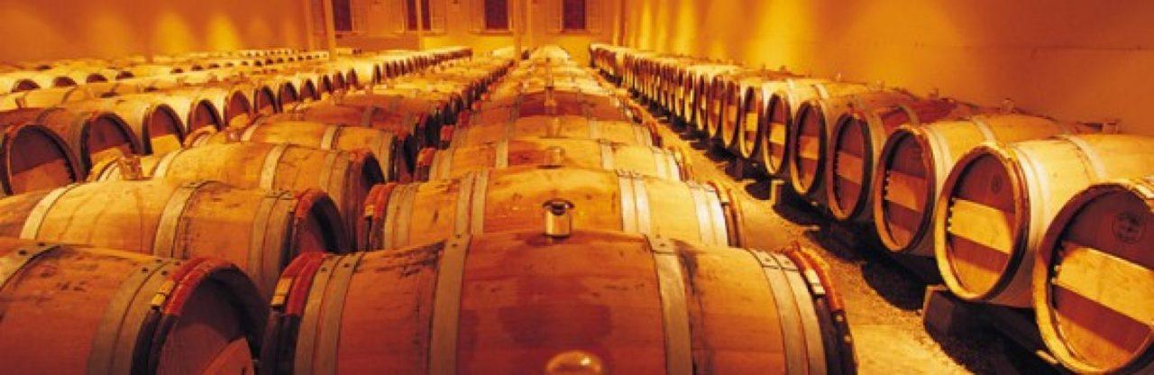 Le vignoble breton, une réalité de plus en plus appréciée…