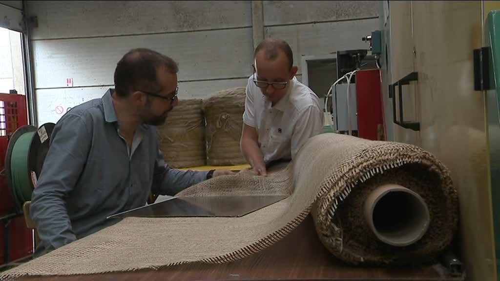 Les Bretons et les Normands s'associent pour faire du lin un matériau d'avenir