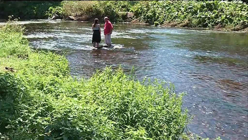 Le saumon sauvage aime les rivières bretonnes