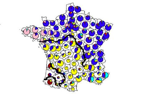 Une nouvelle étude génétique montre que la Bretagne a un héritage différent