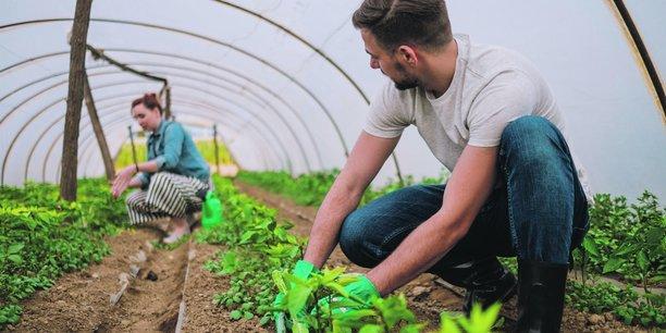 La Bretagne accompagne la transition vers l'agroécologie