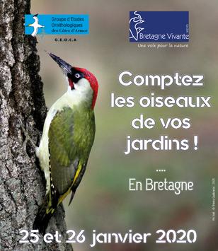 Les 25 et 26 janvier, comptez les oiseaux des jardins