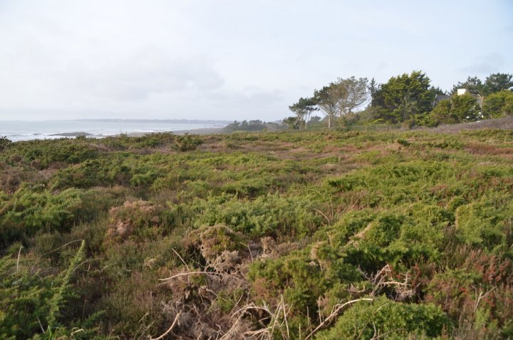 Une commune bretonne impose l'agriculture bio et paysanne à 400 propriétaires