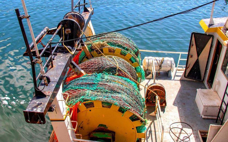 Bientôt des filets de pêche biodégradables ?