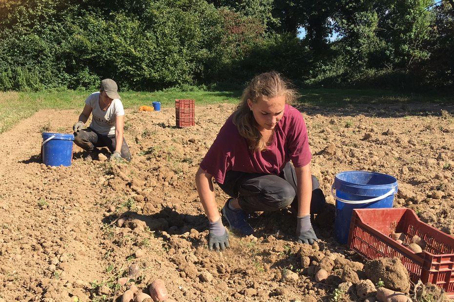 Pérenniser le terrain agricole, éviter l'endettement des paysans. Les missions de Terre de liens