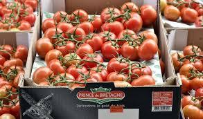 La marque Prince de Bretagne va doubler sa production de légumes bio