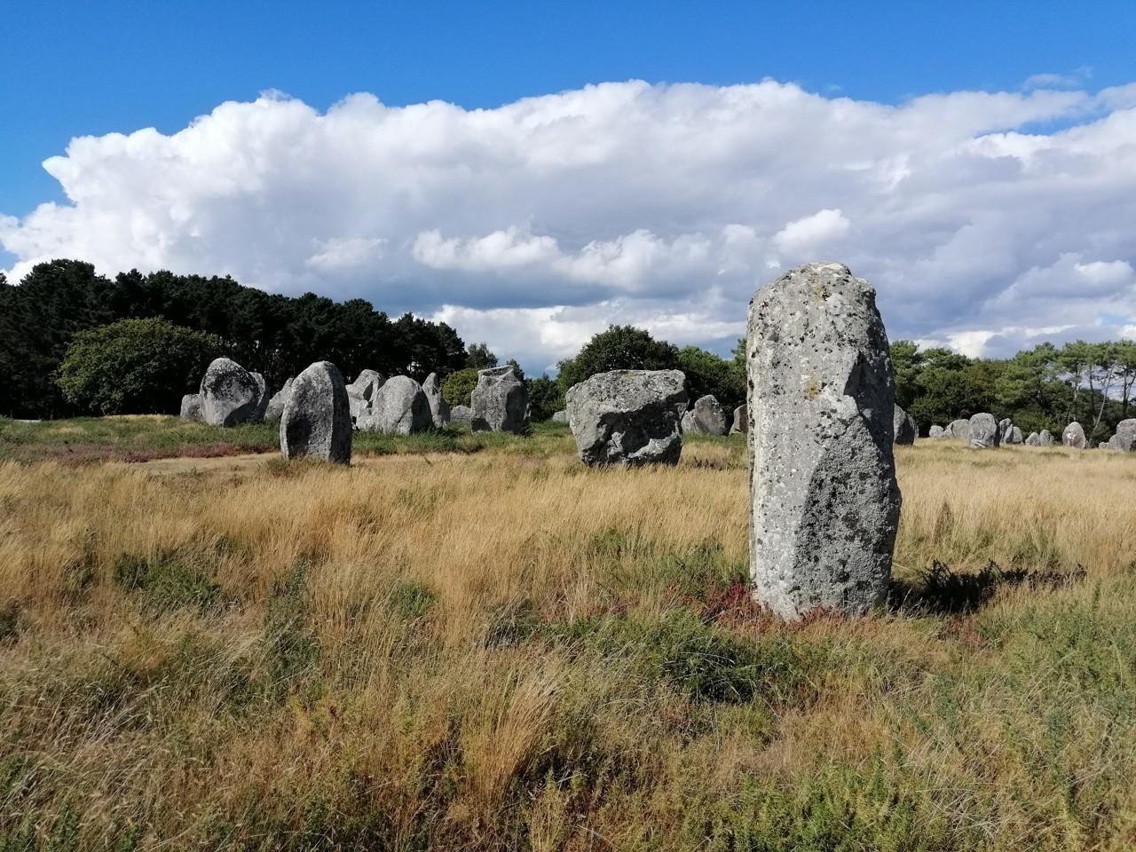 Mégalithes de Carnac : une charte signée pour que le dossier soit classé à l'Unesco