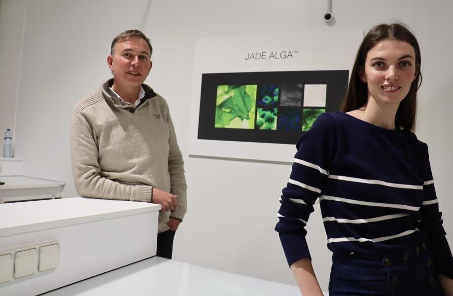 Ces Bretons transforment l'algue verte mal aimée en précieux ingrédient cosmétique